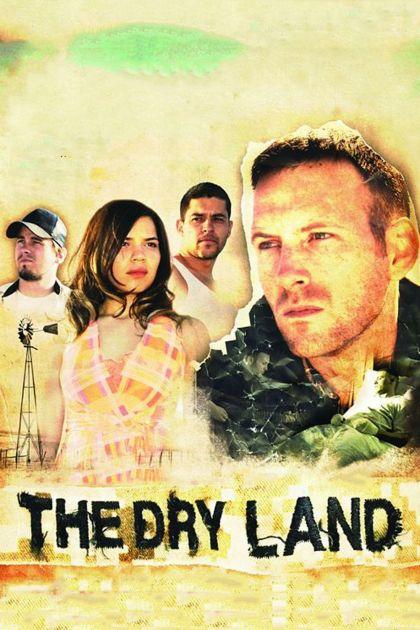 Amp land movie links